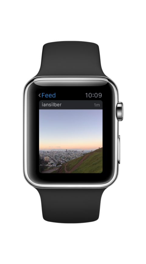 Instagram for Apple Watch