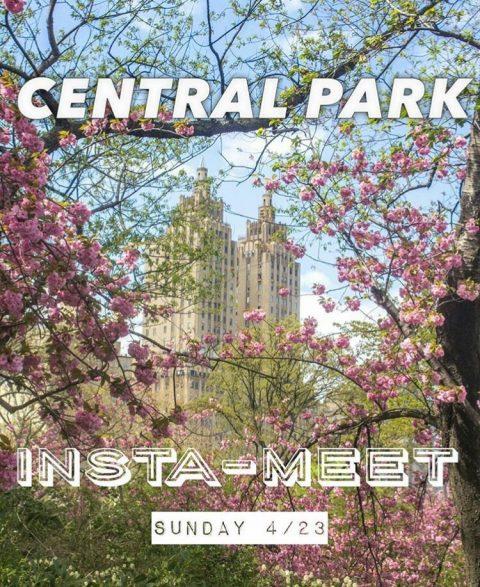 IG New York Spring Central Park 2017